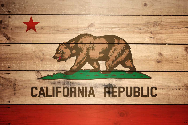 california state flag name