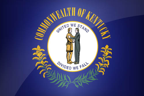 Image Result For California State Flag