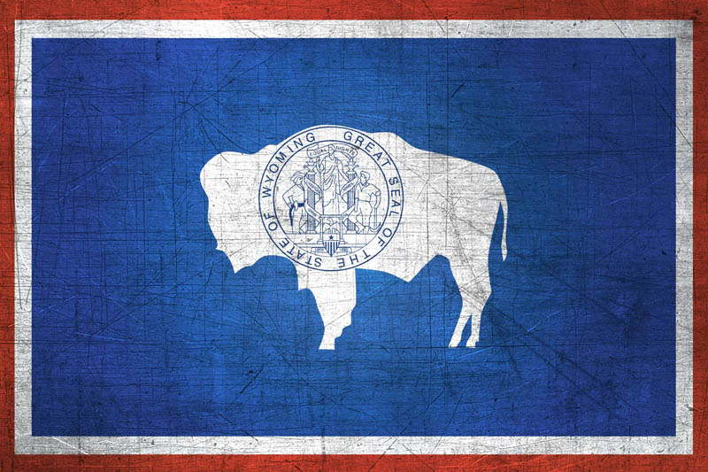 Image Result For Wyoming State Flag